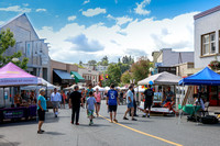2016 Bathtub Days Street Fair